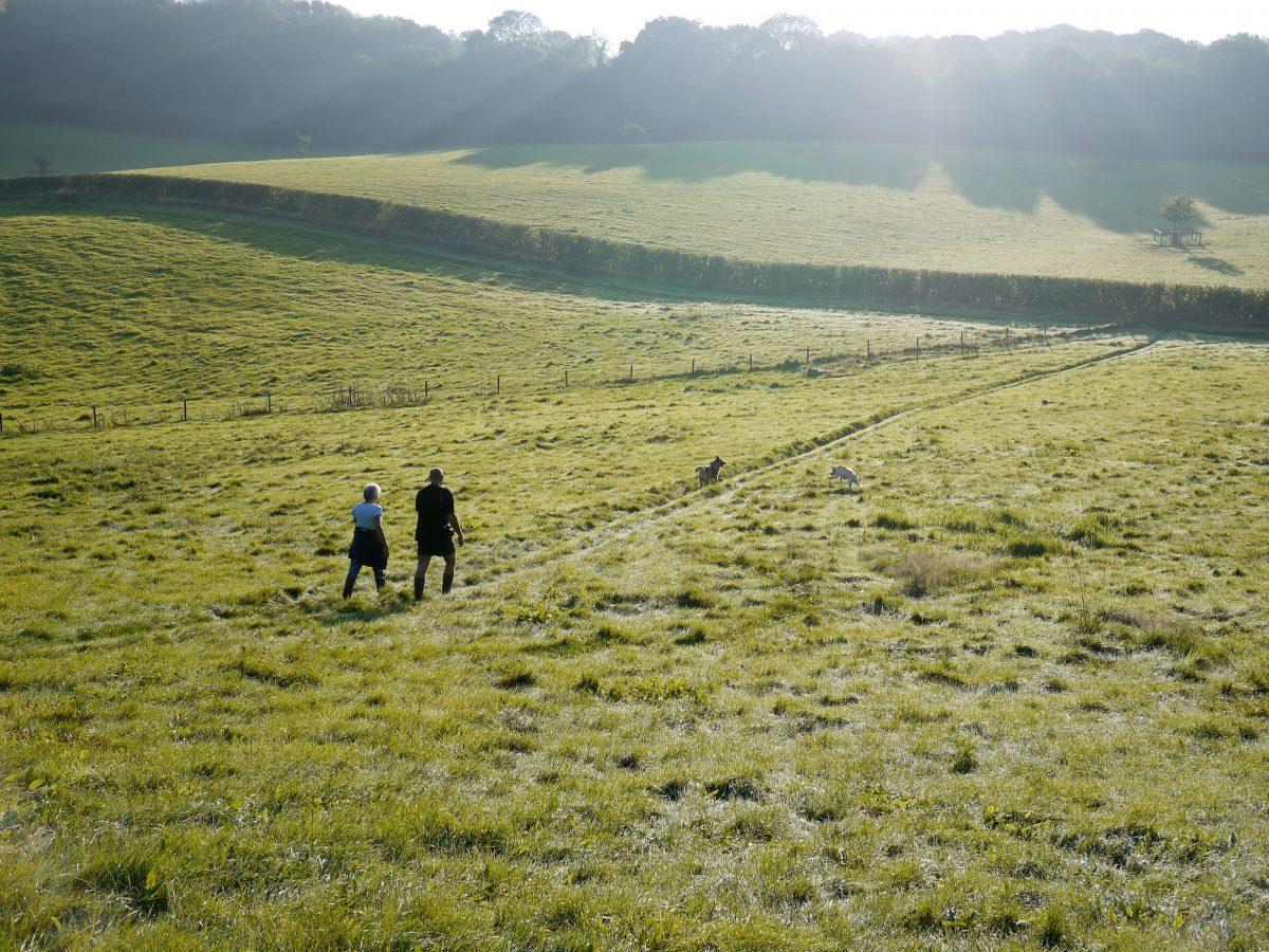 burford walking