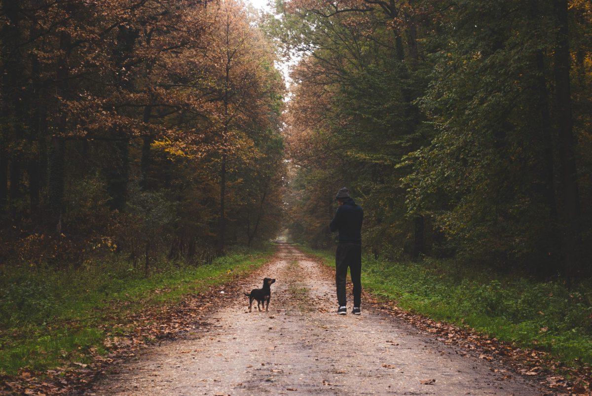 tetbury walking