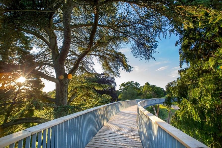 Westonbirt aerial walkway